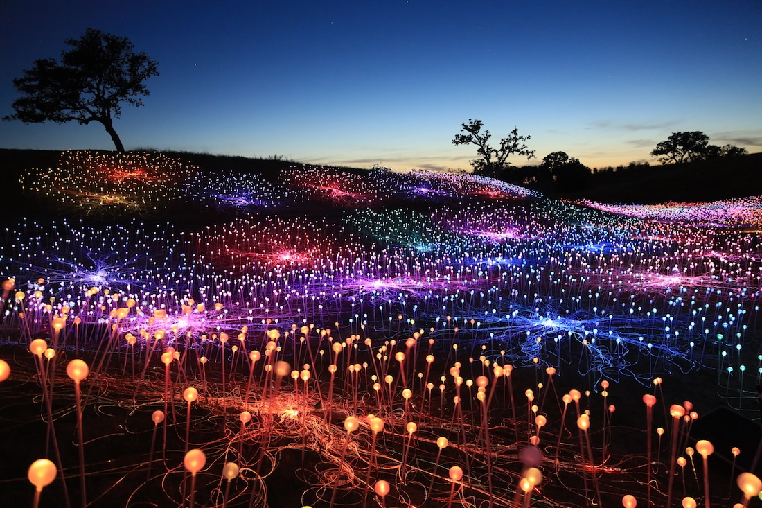 bruce-munro-field-of-light-at-sensorio-1