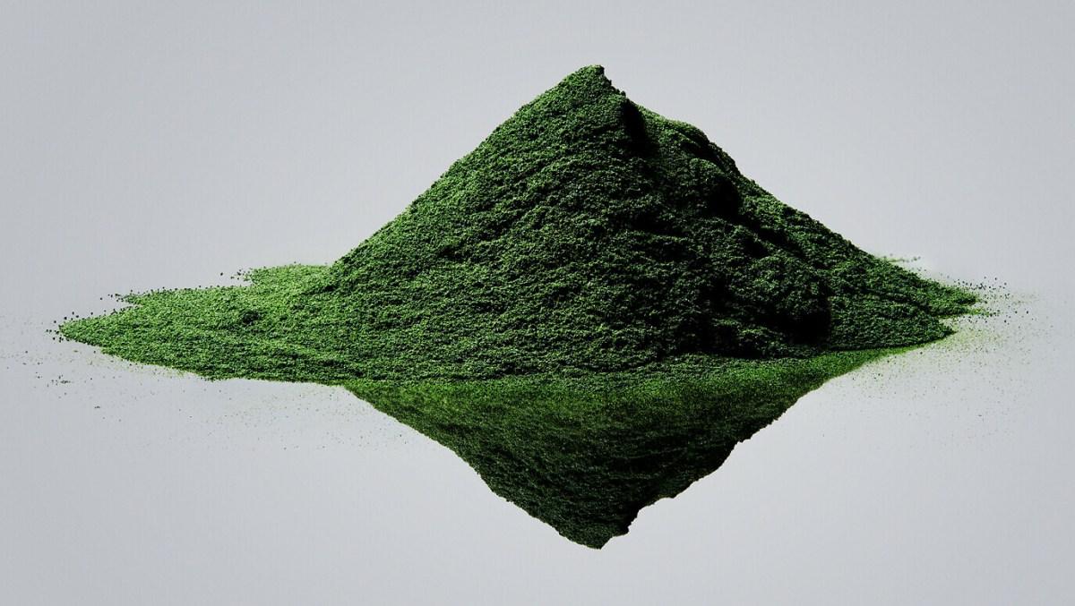 plant-and-algaet-201-1376-1376x776