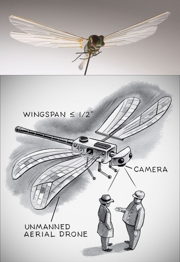 insectothopter-dragonfly-drone