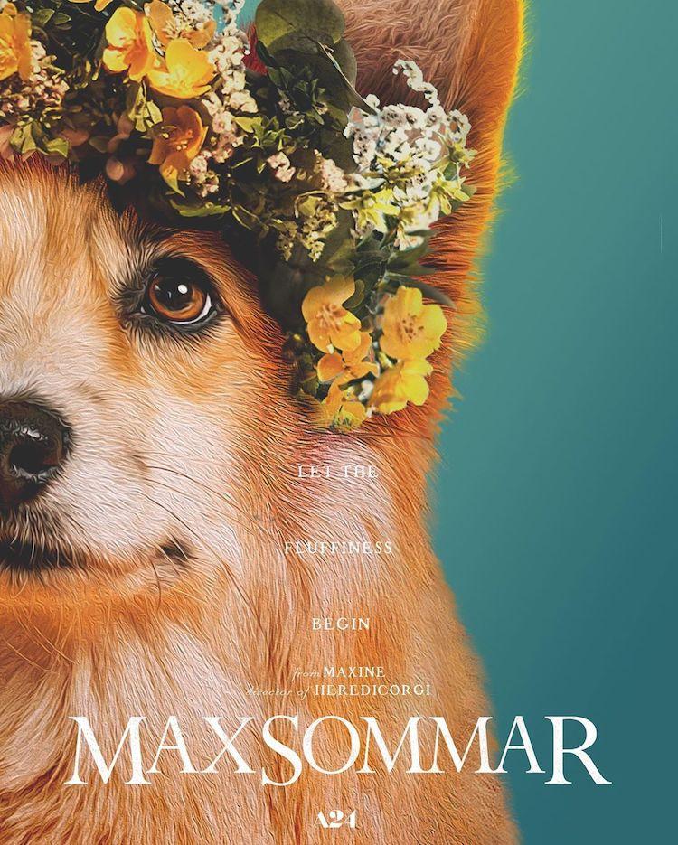 maxine-the-corgi-film-poster-recreations-5