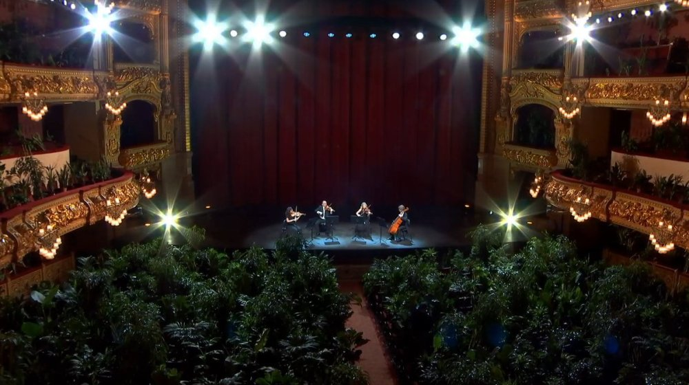 concert-for-plants-barcelona-gran-teatre-liceu-opera-house-1