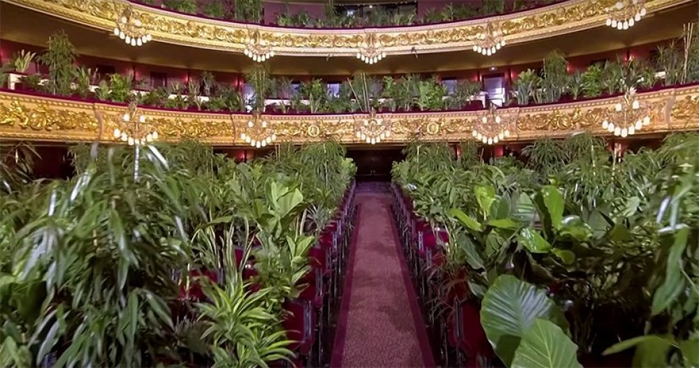 concert-for-plants-barcelona-gran-teatre-liceu-opera-house-2
