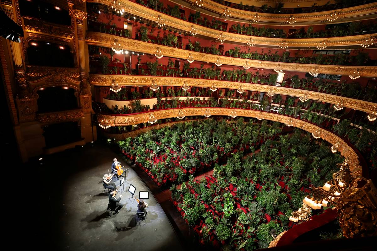 concert-for-plants-barcelona-gran-teatre-liceu-opera-house-cover