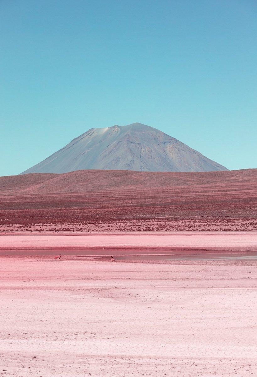paolo-pettigiani-alpaca-river-infrared-photography-peru-moss-and-fog6