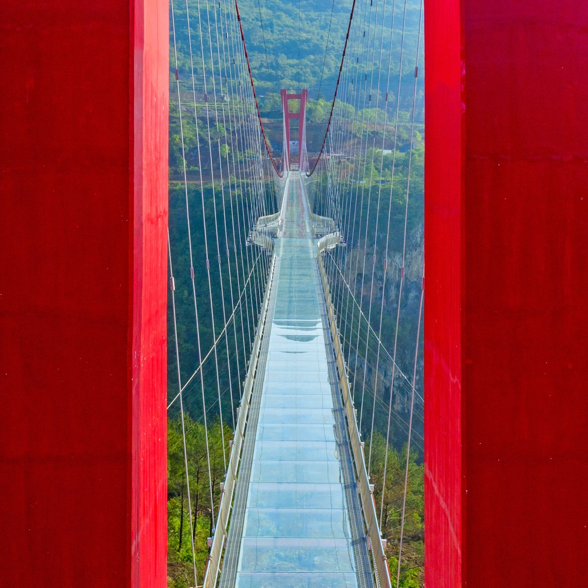 worlds-longest-glass-bridge-moss-and-fog-5