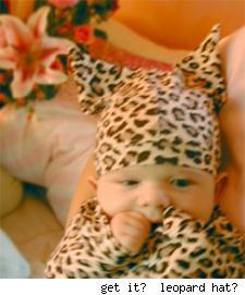 leopard guia