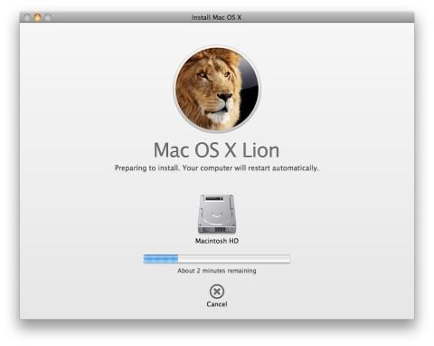 Lion instal·lació