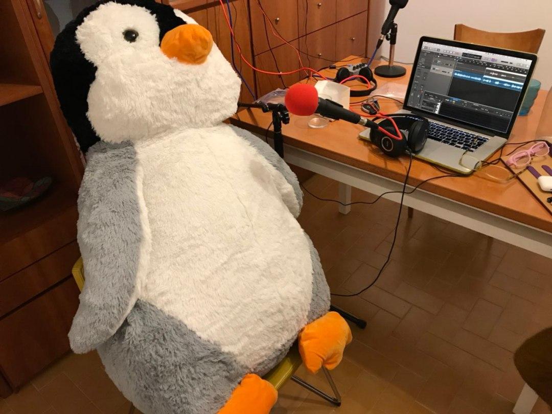 Pingüí Interruptus