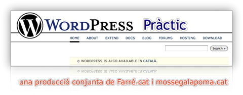 wordpress practic
