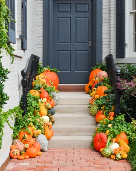 Pumpkins on porch steps