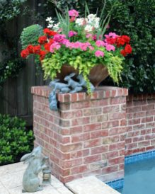 We wouldn't normally reveal a client's name, but we have special permission this time because this beautiful planter belongs to Gary Moss! Pink and red geraniums, paper whites and creeping jenny make up this extra cheerful spring arrangement!