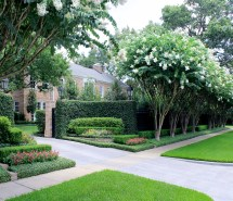 Landscaped Entrance Crape Myrtles
