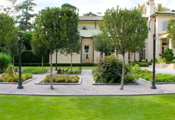 Ground view of the herb garden looking toward the home shows a manicured row of boxwood hedging.