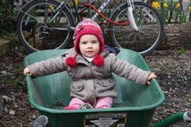 child in a wheelbarrow - Copy