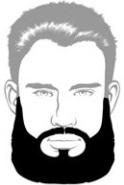 Beard Types - Garibaldi Beard - Mossy Beard