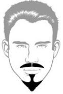 Beard Types - Van Dyke Beard - Mossy Beard