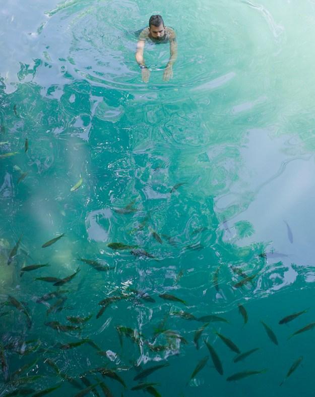 10swimmingwithfish