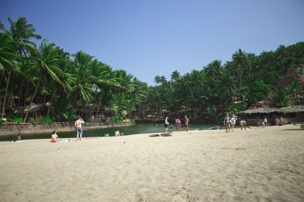 Blog review. Agonda Beach, Goa, India. Vegan and Vegetarian guide.