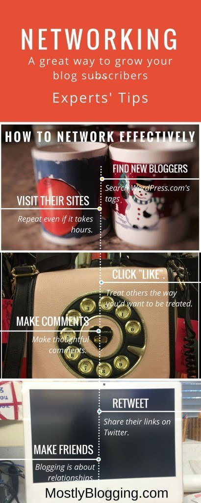 Networking helps bloggers get new subscribers.