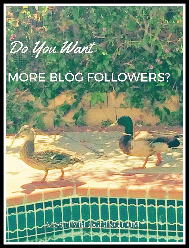 Bloggers can get more blog followers