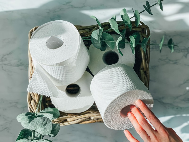 Eco-Friendly Toilet Paper: The 9 Best Brands for 2021 | A hand grabbing toilet paper out of basket