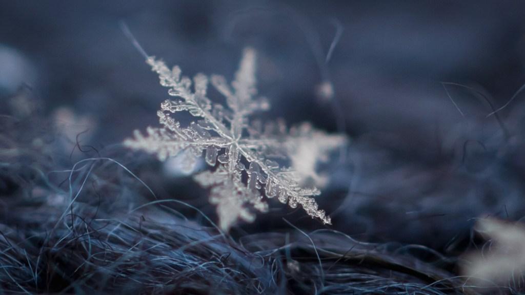 snowflakemacroforblog2