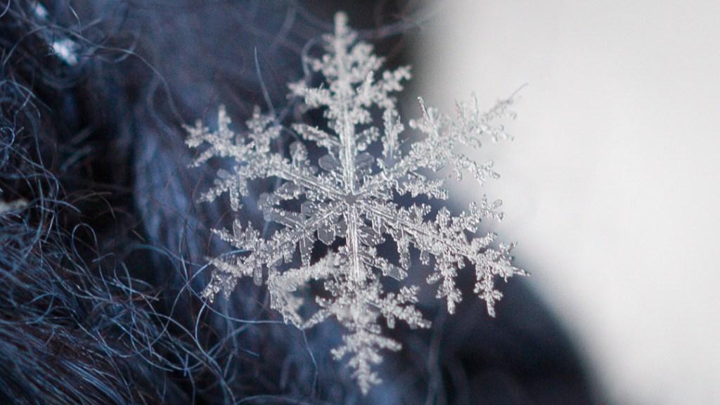 snowflakemacroforblog3