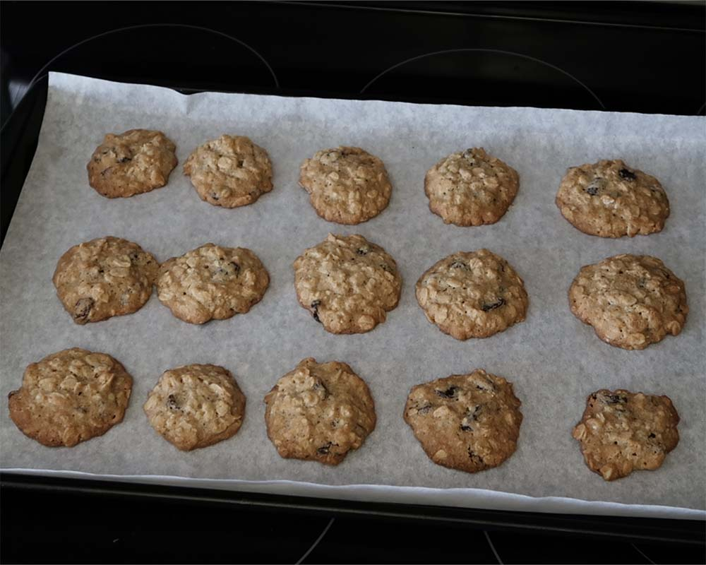 oatmeal raisin cookies out of the oven