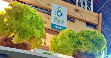 Emprendimiento tecnológico Foodsys