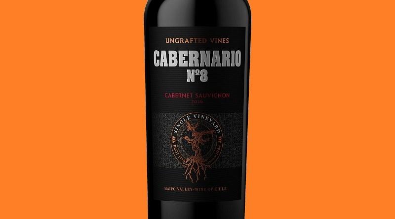 El vino Cabernario de Sur Andino está elaborado con uvas de parras antiguas