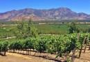 El nuevo tour del cambio climático visita viñedos antiguos en gran parte de Chile