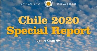 El crítico de vinos británico Tim Atkin acaba de presentar su Chile 2020 Special Report