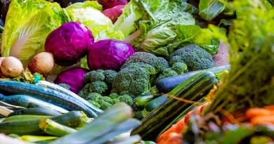 Este jueves 1 de octubre se celebra una nueva edición del Día Mundial del Vegetarianismo, que homenajea a las frutas y verduras.