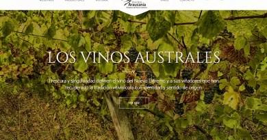 """A fines de enero fue el lanzamiento oficial de """"Vinos de La Araucanía"""", un proyecto asociativo impulsado por viñas emergentes de la región del mismo nombre."""