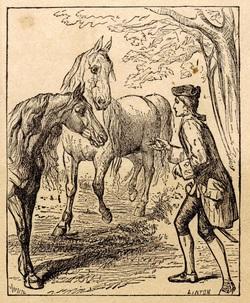 Image result for talking horses gulliver's travels images