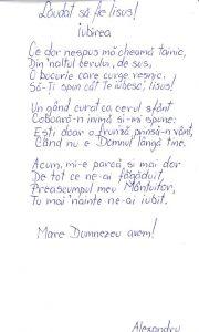 Poezie Alexandru Săplăcan, 11.11.2016