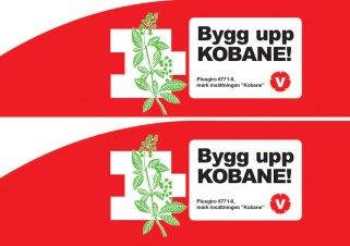 Vi samlade in pengar till Kobane