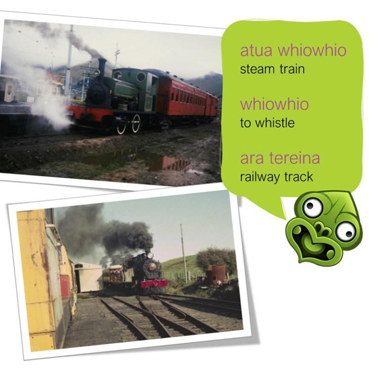 Train with Maori translation