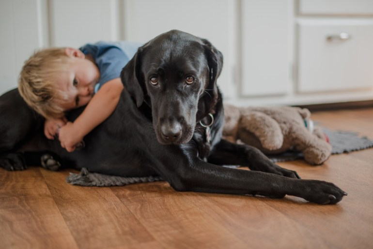 child lying on top of black dog