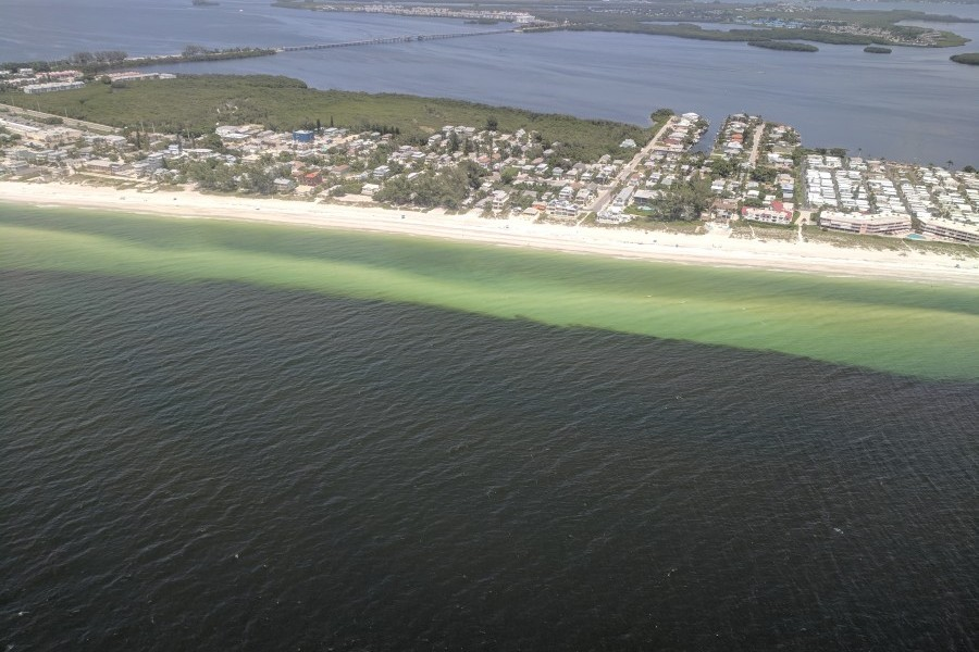 Aerial image of a bloom of Florida red tide in August 2018, taken by Dr. Vincent Lovko, Mote Staff Scientist