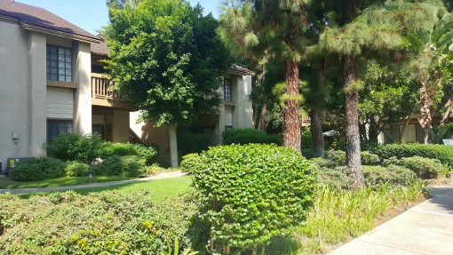 SOLD! 16211 Downey Ave #5, Paramount CA | 2 BED 2 BATH | CLICK FOR MORE DETAILS