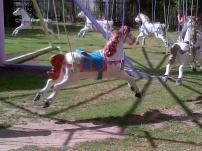 Bugz carousel