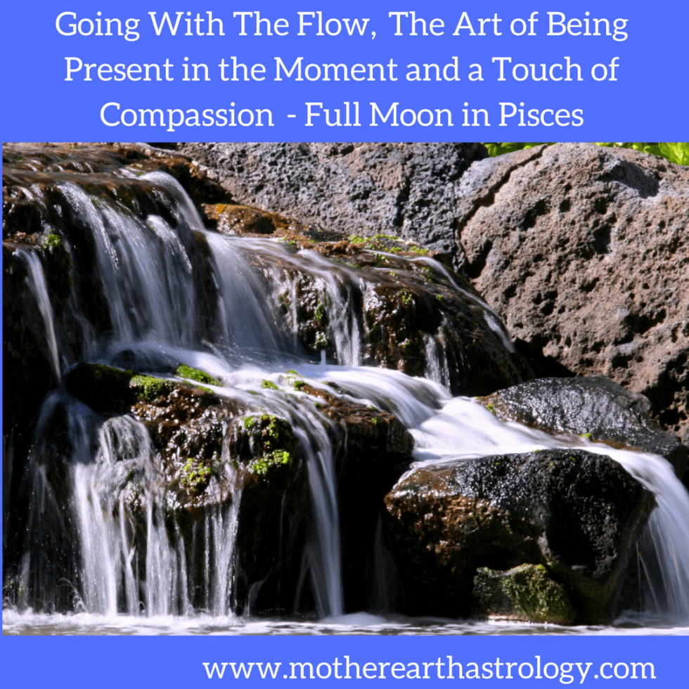 The Potential For Confusion and Overwhelm & The Need to Go With The Flow