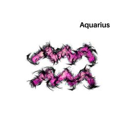 Aquarius Related Essences
