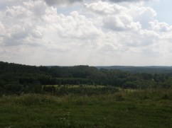 View from the hill