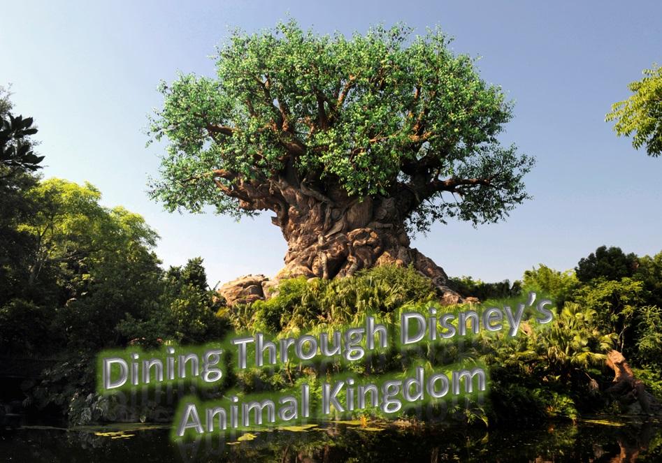Dining through Disney's Animal Kingdom