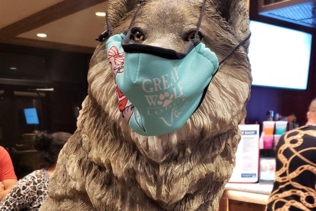 Great Wolf Lodge Wolf Wearing A Mask