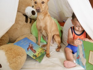 toddler reading with dog sitting nearby