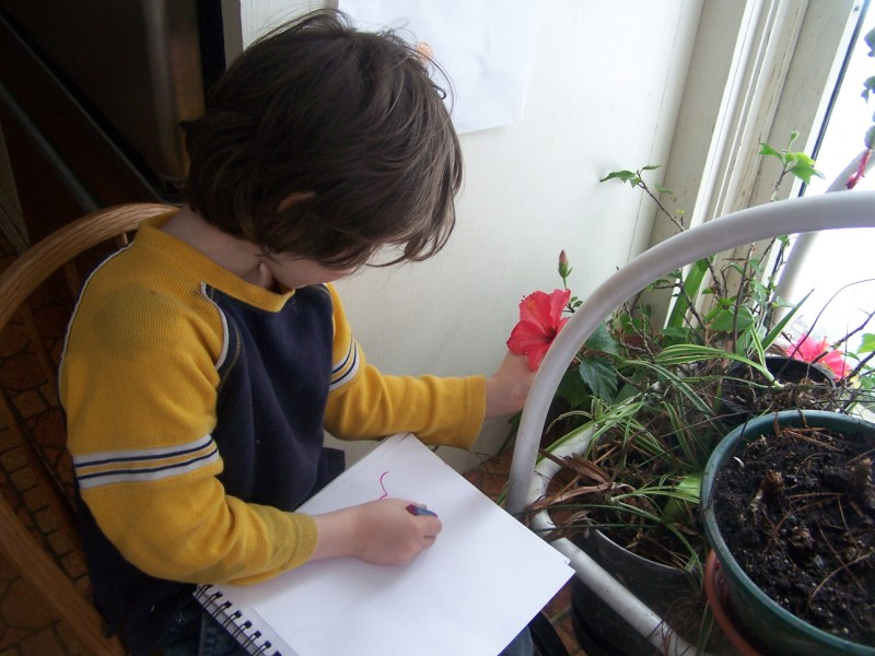 Homeschooling information at Motherhouse