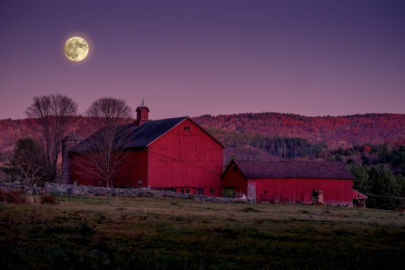 full moon over Local Farm